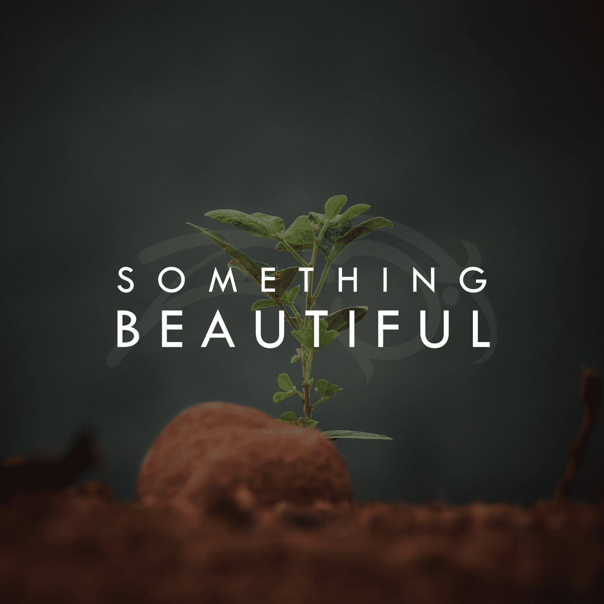 Zo Tobi - Something Beautiful - Cover Art